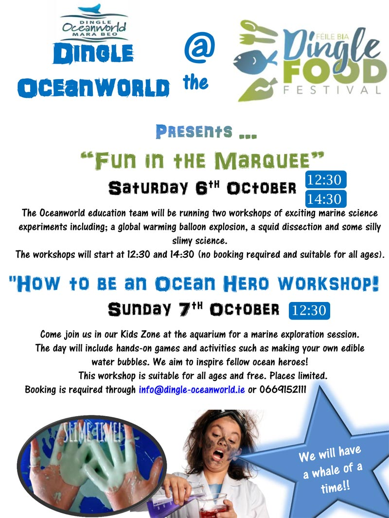 Event details at the Dingle Food Festival